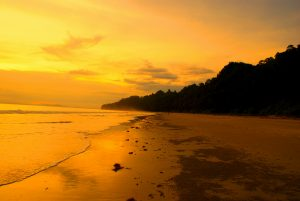 Andaman havelock packages
